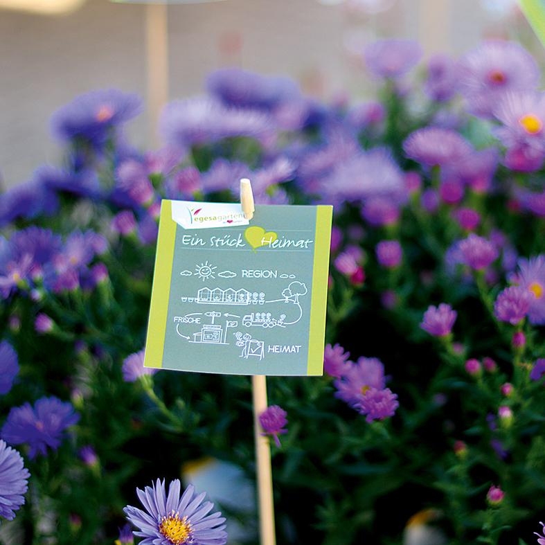 Franchise Gartencenter Gärtnerei Florist Baumschule